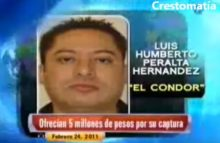 Noticiarios en corto
