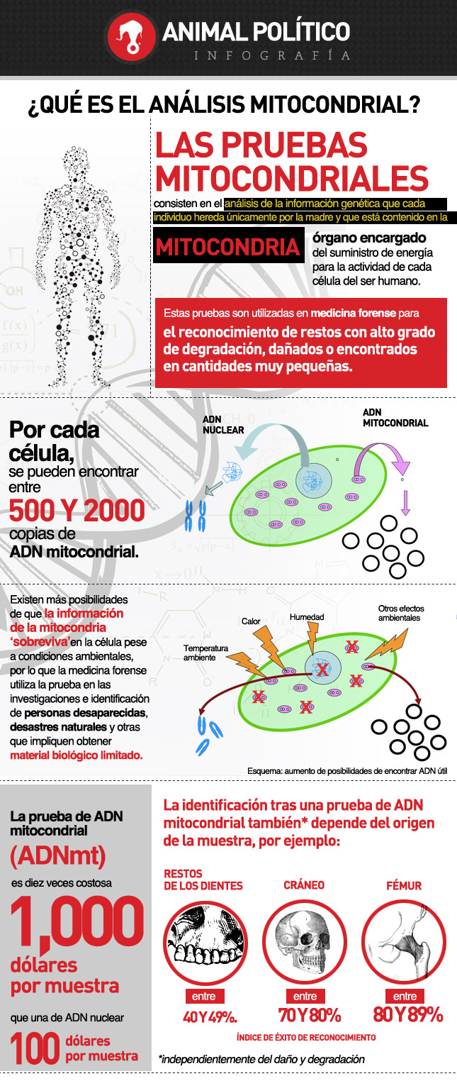 info_analisis_mitocondrial